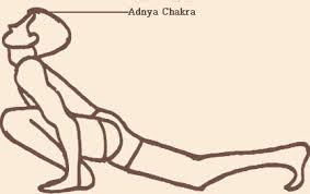 Alinhamento dos chakras l